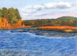 Quagoag River Bog